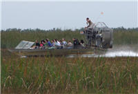 Airboat Everglades Miami