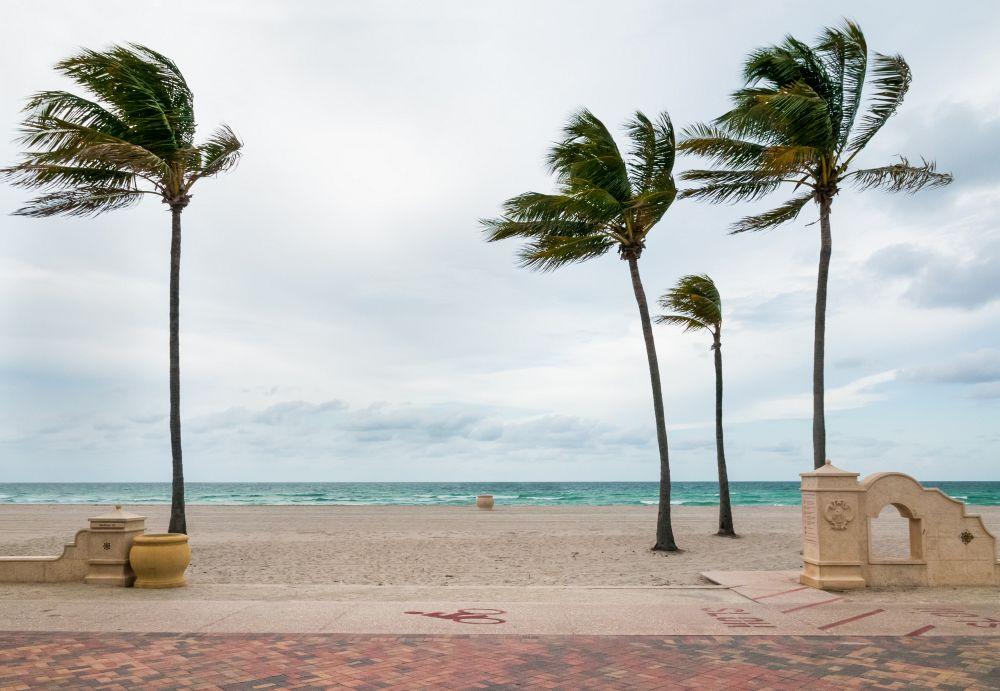 Wetter und Klima in Miami Beach